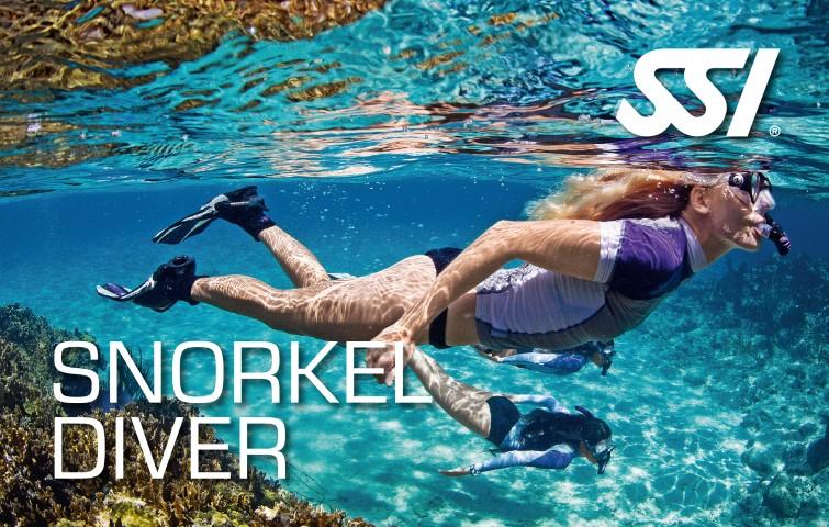 470000_snorkel-diver-small