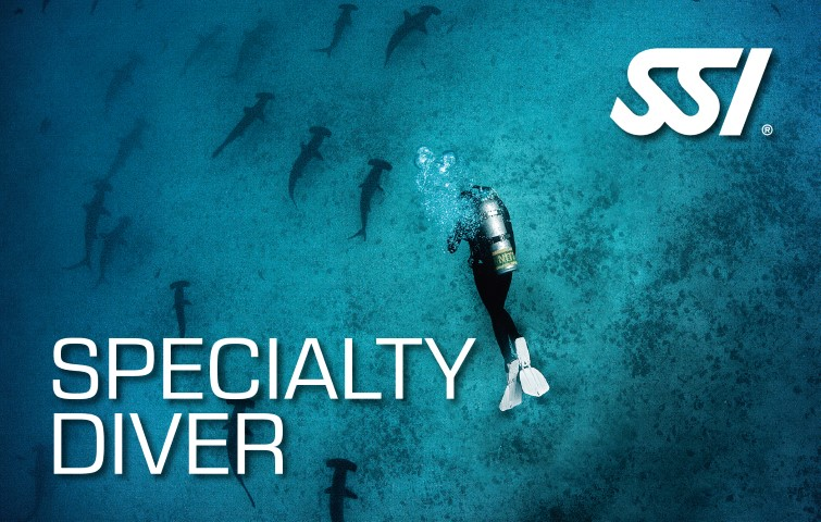 472550_specialty-diver-small